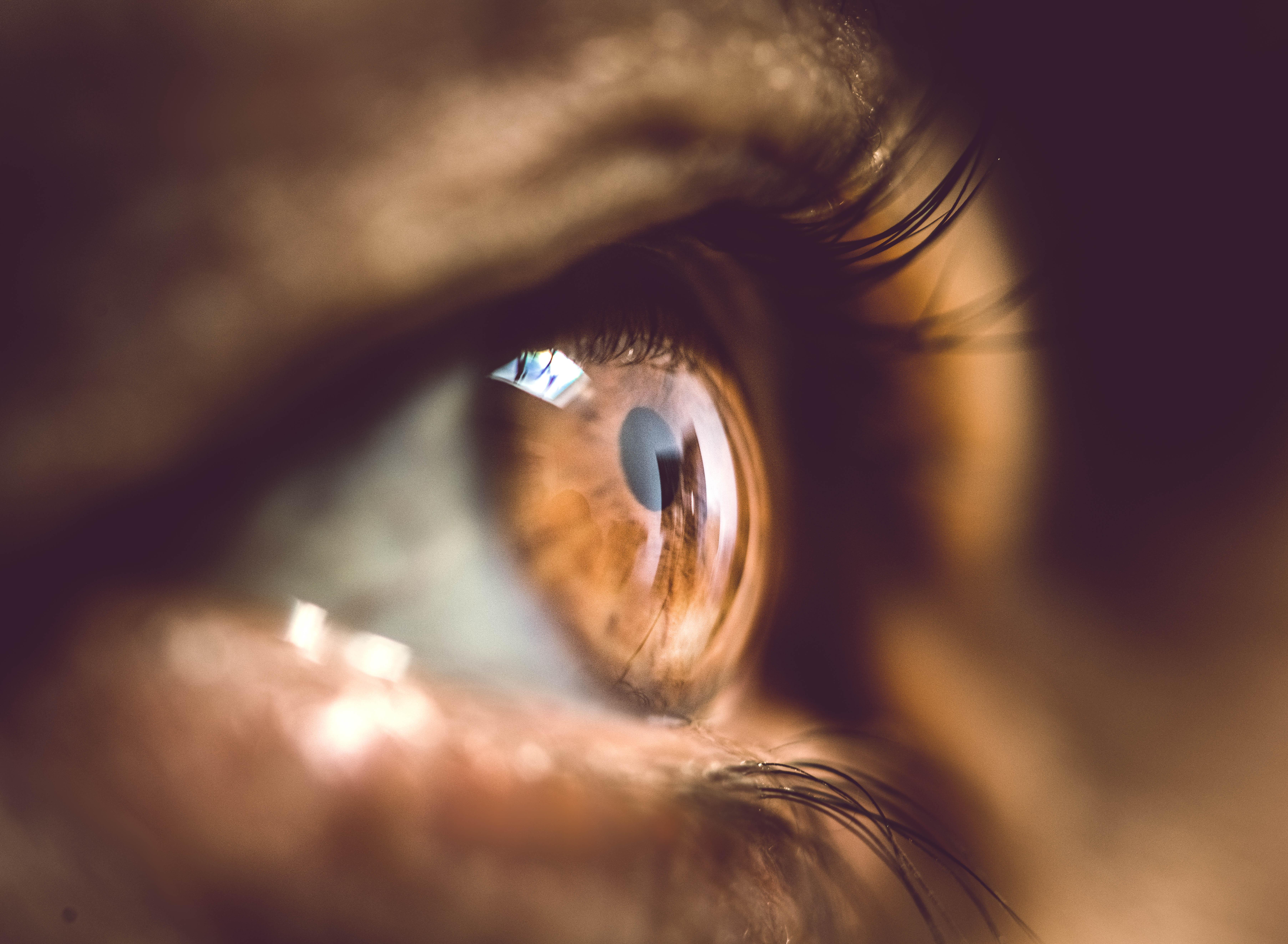 Un œil sur le regard